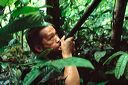 content/rainforest.htm/preview/mal0511_044.jpg